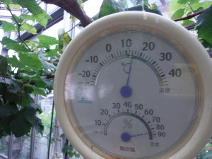 20160625_thermometer