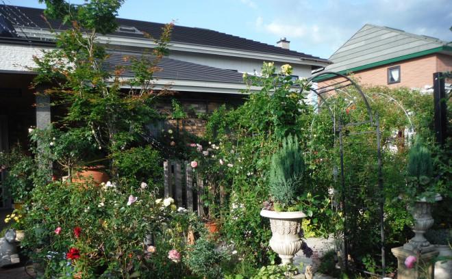 20160630_garden2