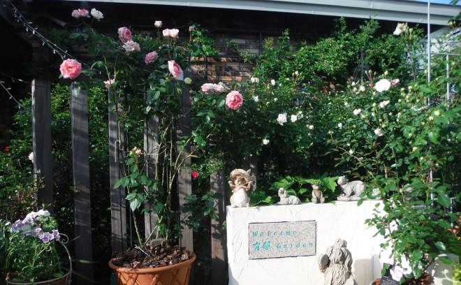 20160630_garden3