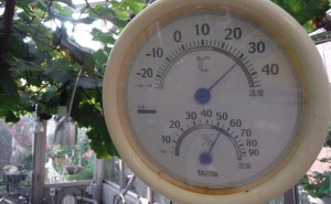 20160630_thermometer