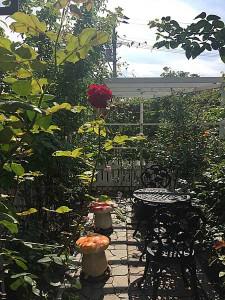 3516_garden1