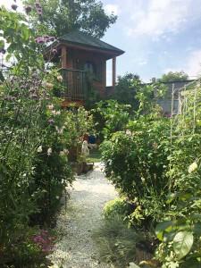 3517_garden2
