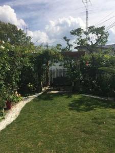 3521_garden4